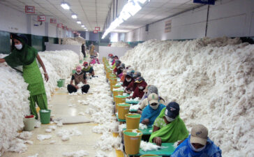 1280px CSIRO ScienceImage 10736 Manually decontaminating cotton before processing at an Indian spinning mill